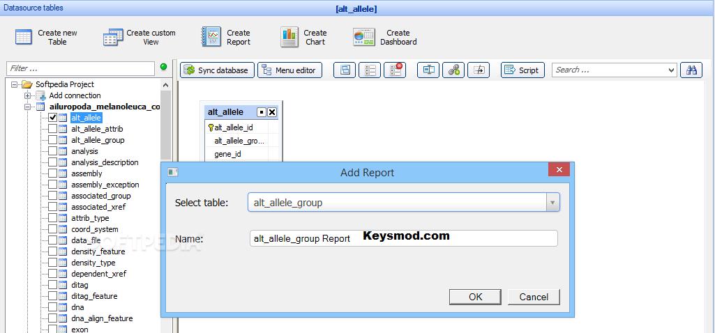 PHPRunner Key